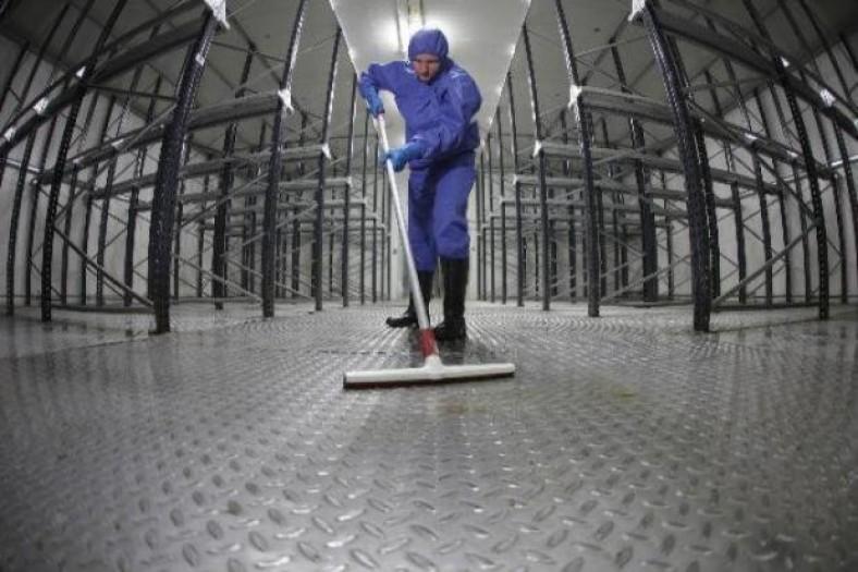 www.emagister.com-laborus-work-consulting-2973569-higiene-industrial-31
